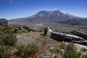 Mt St Helens-2