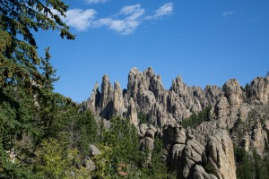Custer State Park-3