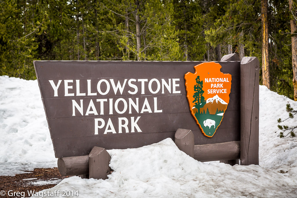 Let the Yellowstone Adventure Begin!