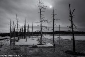 Yellowstone0001