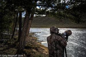 Yellowstone0017
