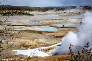 Yellowstone0024