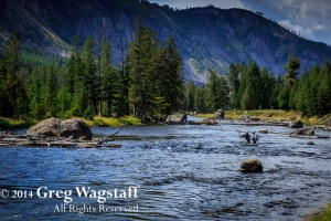 Good Bye Yellowstone-13