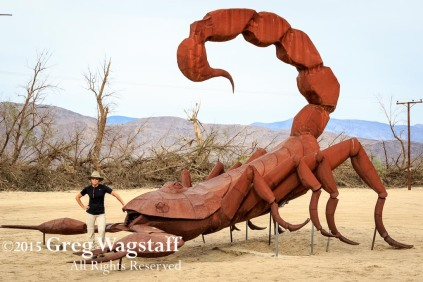 Borrego Springs-4