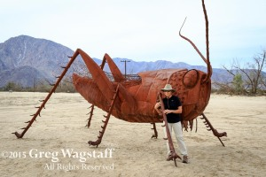 Borrego Springs-5