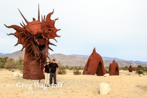 Borrego Springs-8