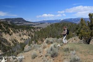 Yellowstone 2015-6