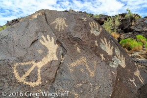 Petroglyph National Monument-5